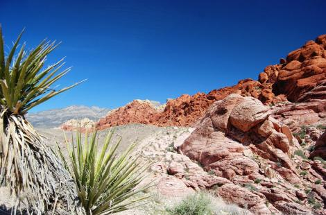 Le Red Rock Canyon